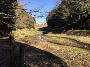 早川城の水源