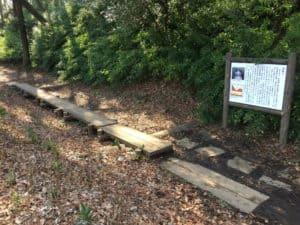 岩槻城の障子掘