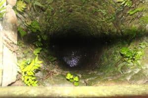 久留米城の井戸