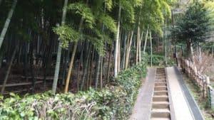 小机城への遊歩道