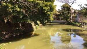 横須賀城の三日月堀