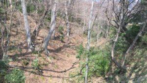 躑躅ケ崎館跡の堀