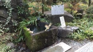 躑躅ヶ崎館跡の井戸