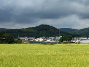 井伊谷城の遠景