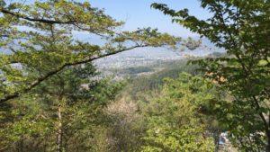 米山城からの展望