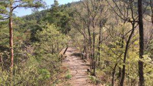 戸石城への道