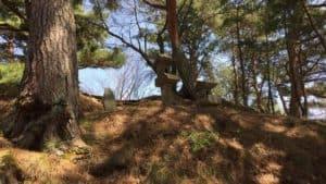 真田本城の本郭
