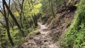 丸子城への登山道