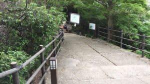 岐阜城の尾根
