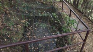 岐阜城の井戸