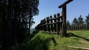 足助城の西ノ丸