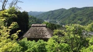 真弓山城の本丸から西の丸を望む
