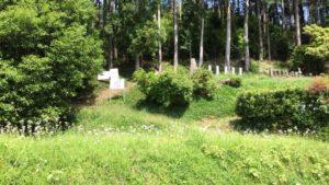 真田信綱と真田昌輝の墓