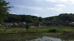 小山田神社からの眺め