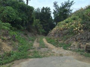北熊井城の堀切