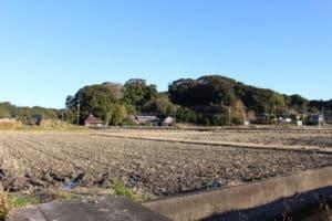 舟ヶ谷城(新野城)