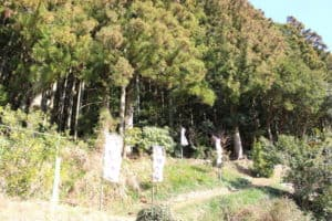 柿本城への登城口