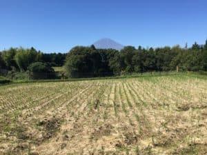 深沢城の本丸から望む富士山