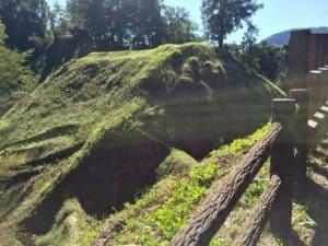 河村城の茶臼郭から見た畝堀(障子堀)
