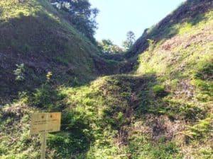 河村城の堀