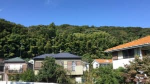 小沢城の遠景