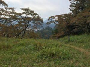 勝山城の本丸