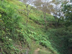 勝山城の斜面