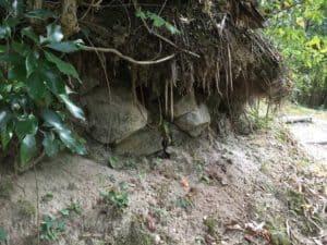 勝山城の石垣