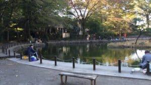 赤塚城のため池