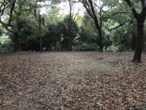 茶臼山城の本丸