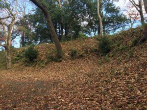 韮崎城の土塁