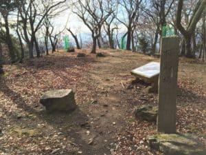 小谷城の桜馬場