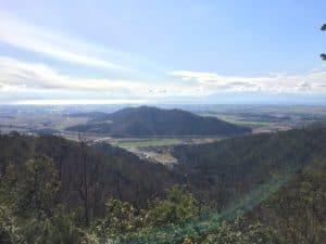 小谷城から虎御前山を望む