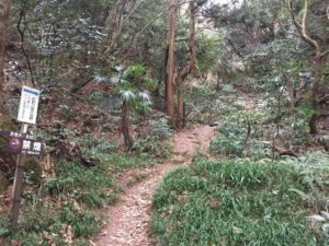 佐和山城へのハイキングコース