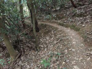佐和山城の登山道