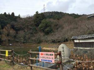 大原観音寺の蓮池