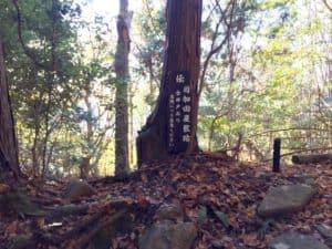 観音寺城・目賀田摂津守の屋敷跡