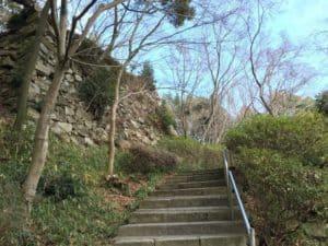 八幡山城の石垣