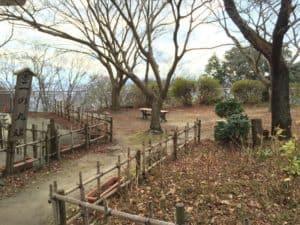 八幡山城の二の丸