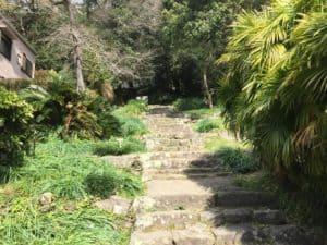 宇和島城の登り口