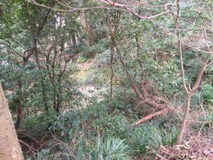 宇和島城の井戸