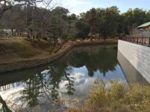 湯築城の水堀