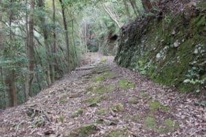 犬居城への登山道
