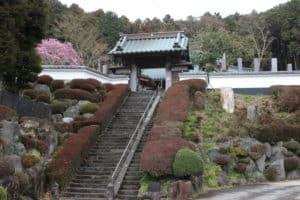 仙年寺の山門