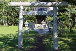 館山城の本丸