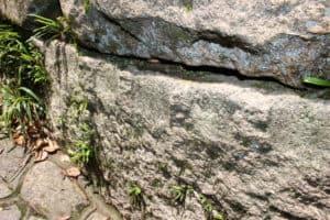 亀居城の石垣