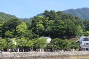 宮尾城の全景
