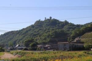 安芸・梨羽城