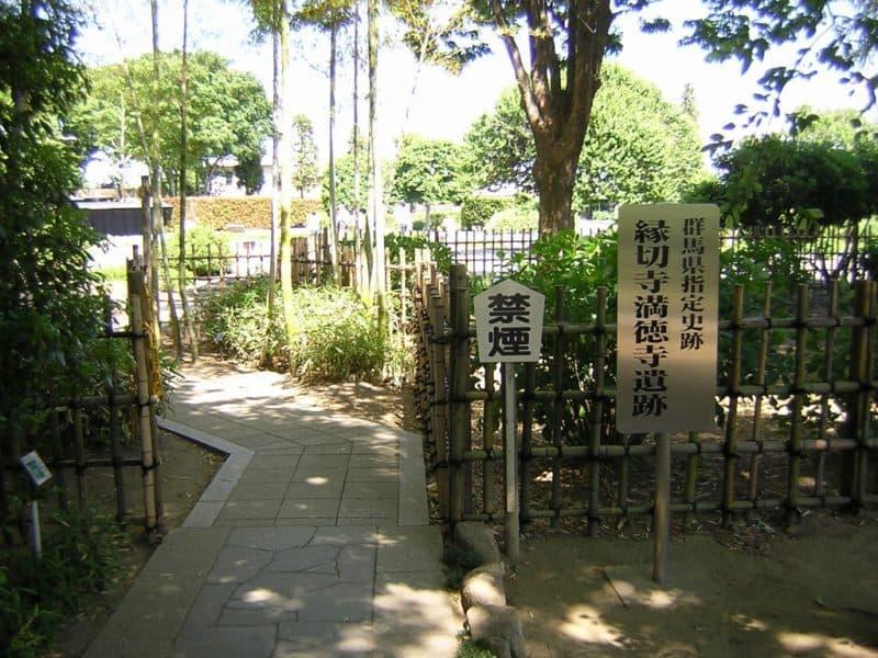 徳川家康が姓を変え苗字を変えた...