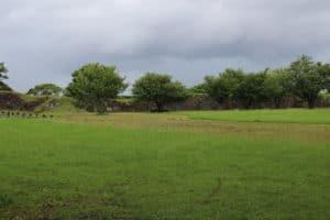 名護屋城の二の丸跡